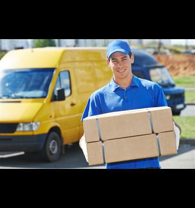 Consegna ed installazione in azienda - Eventuali manutenzioni e Servizi di Assistenza
